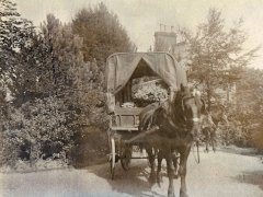 33a-Horse--Cart-with-flowersComp.jpg